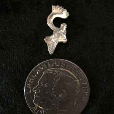 litet renhuvud pins tennren renhorn arcticart örjansfiske